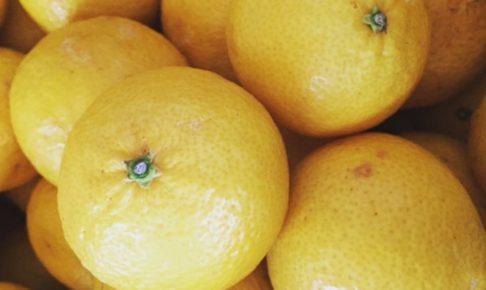 ゴールデンオレンジ
